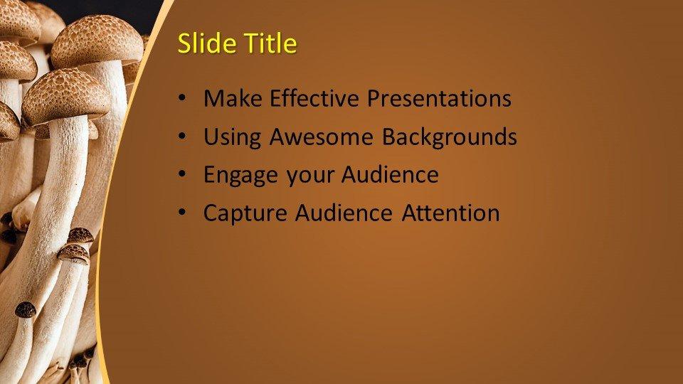 Powerpoint presentacion Champiñón