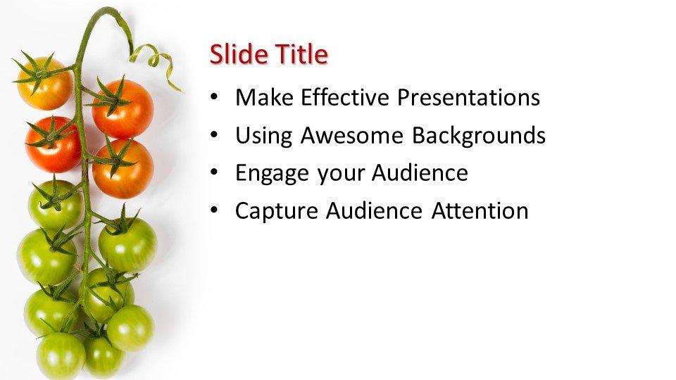 Powerpoint presentacion Tomate