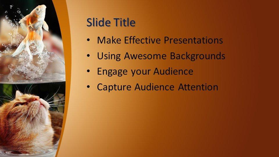 Powerpoint presentacion Pecera
