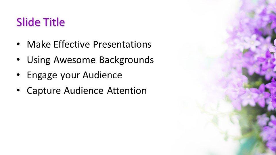 Powerpoint presentacion Lila