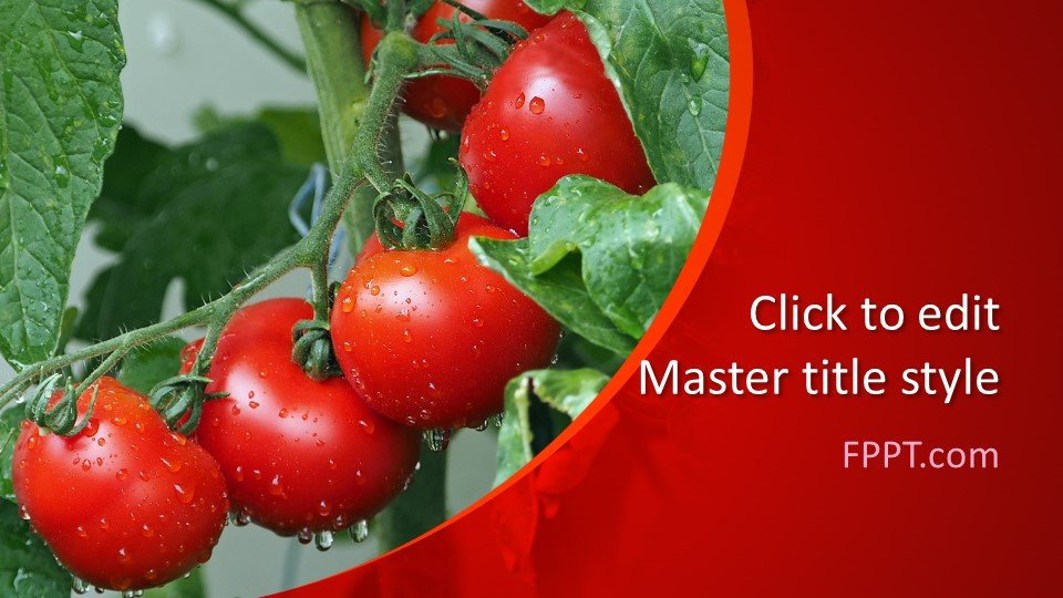 descargar plantilla powerpoint Tomates