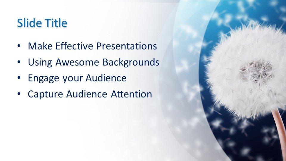 Powerpoint presentacion Dandelion