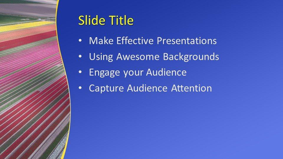 Powerpoint presentacion Campos
