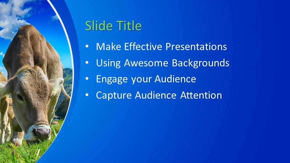 Powerpoint presentacion Reses