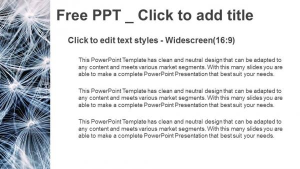 Descargar Presentaciones plantillas powerpointSemillas de diente de león blanco y negro con fondo natural
