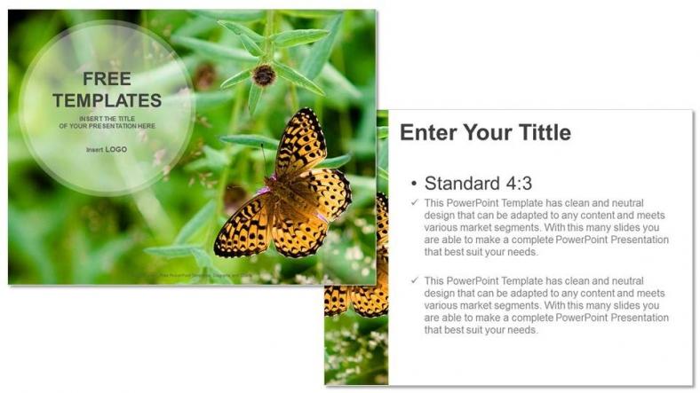 Powerpoint para presentacionesMariposa sobre Flor