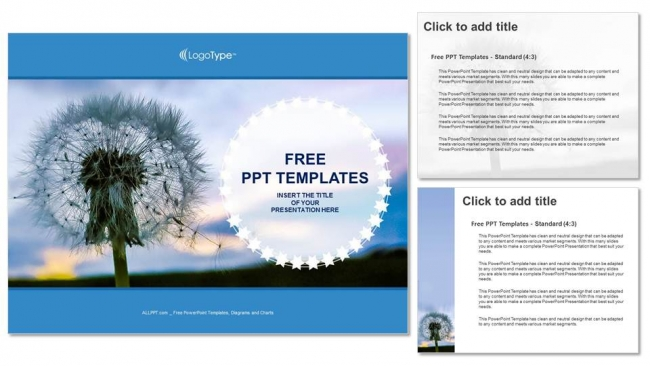 Diapositivas plantilla powerpointSemillas de diente de león