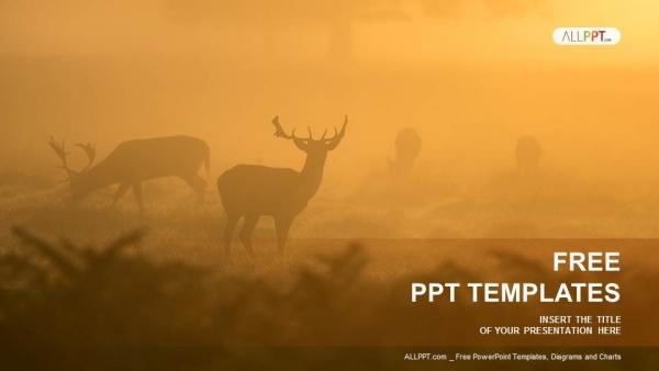 Presentaciones plantilla powerpointVenado en la niebla