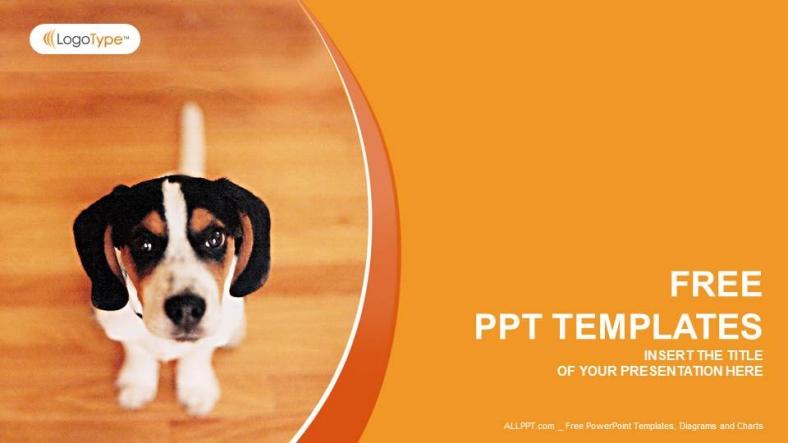 Presentaciones plantilla powerpoint Pequeño Perro
