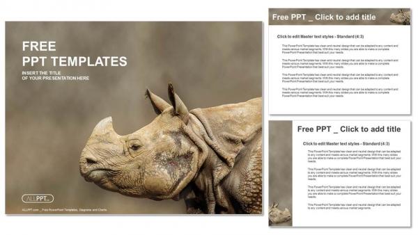 Presentaciones plantilla powerpointRhino, Rhinoceros head shot